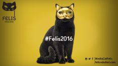 Felis Ödülleri'ne başvuru için son 4 gün
