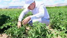 Tarımsal Kalkınmada Yeşilyurt Modeli Oluşturmaya Çalışıyoruz