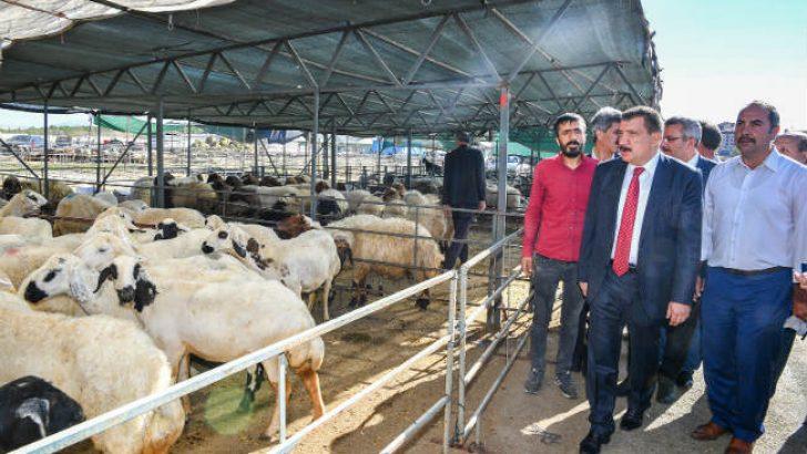 Malatya Canlı Hayvan Pazarında Hijyen kurallarına dikkat ediliyor