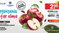 Doğanşehir'in verimli tarlalarından sofralarınıza uzanan vitamin deposu
